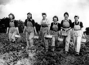 Land Girls strawberry picking 1944