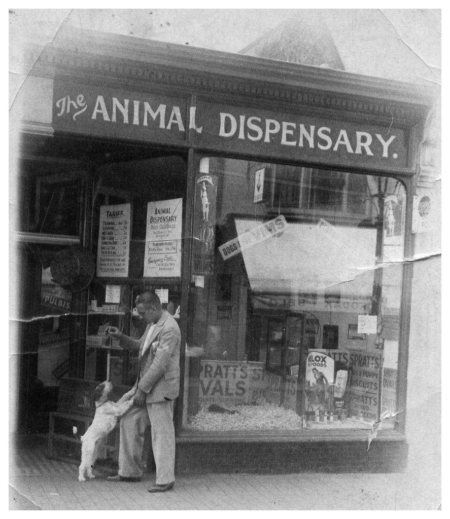 The_Pet_Shop
