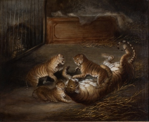 3 liger cubs 1824 attr to Richard Barrett Private collection