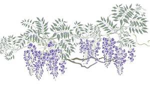 wisteria-large-g3